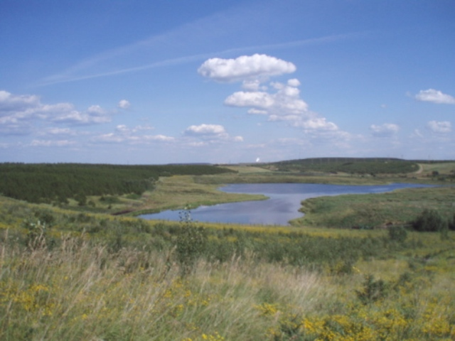Reclaimed land - processed land turned back to nature